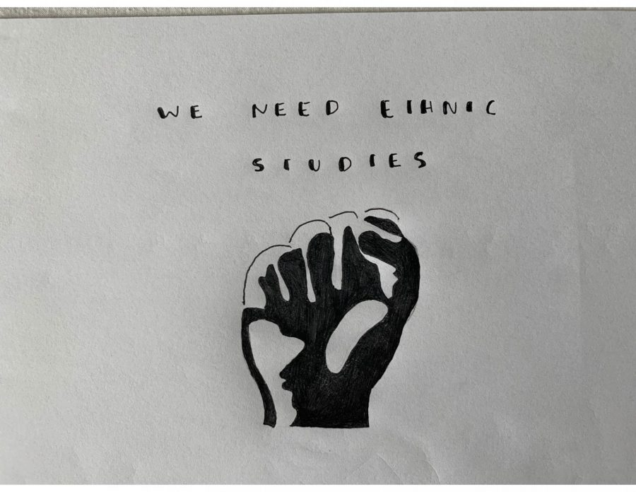 Why aren't ethnic studies a necessity for higher education at CUSD?