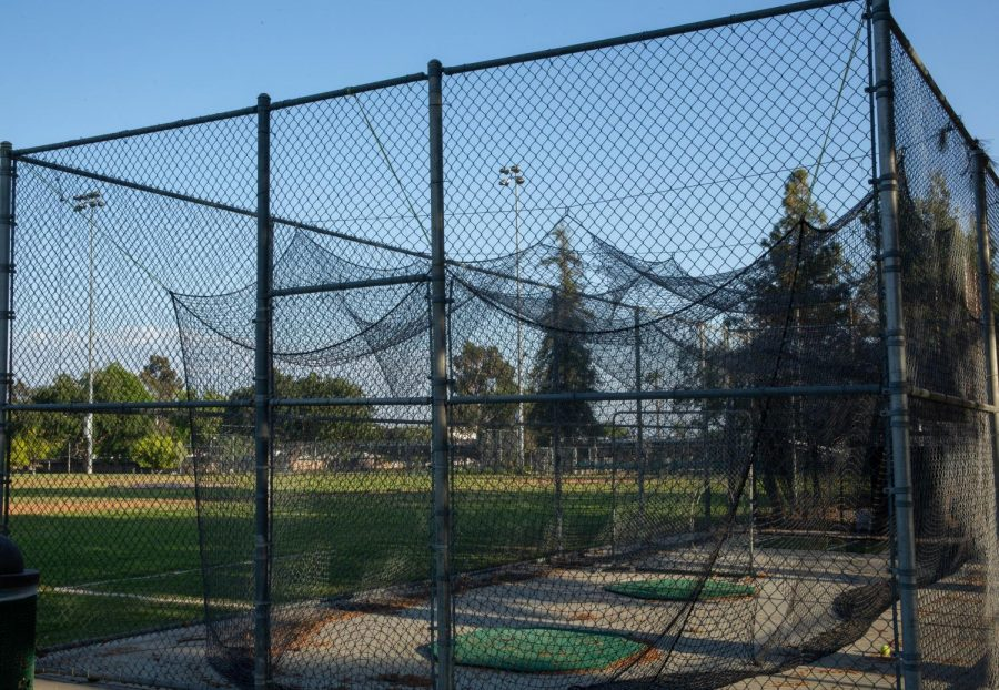 A picture speaks a thousand words: evidence of disparities between softball and baseball batting cages