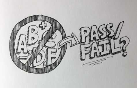 Student opinions on CHS's pass/fail option